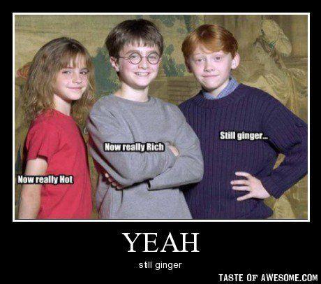 Yeah Still Ginger Harry Potter Jokes Hilarious Harry Potter