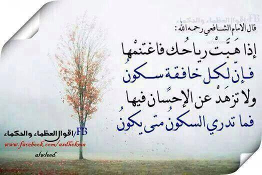 الامام الشافعي رحمة الله Nana Quotes Cool Words Quotes