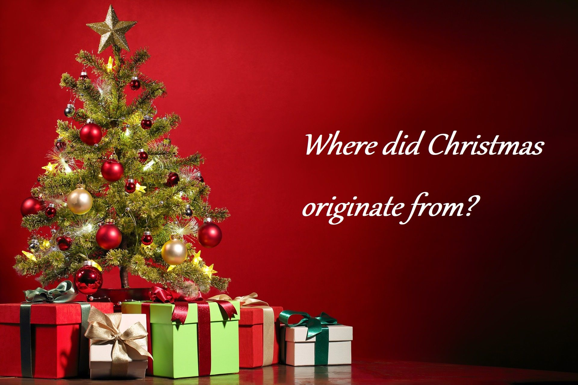 Where Did Christmas Trees Originate.Origin Of Christmas True And False Christmas Tree Images