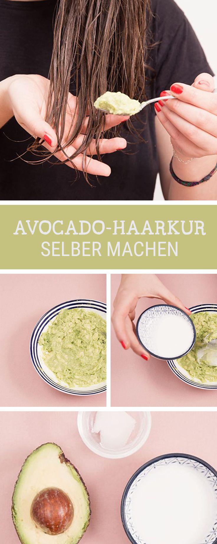 diy anleitung haarkur mit avocado und kokosnuss fà r trockenes