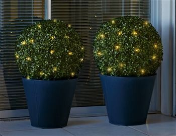 Small topiary ball green thumbing it pinterest outdoor buy extra large topiary ball from the next uk online shop aloadofball Images