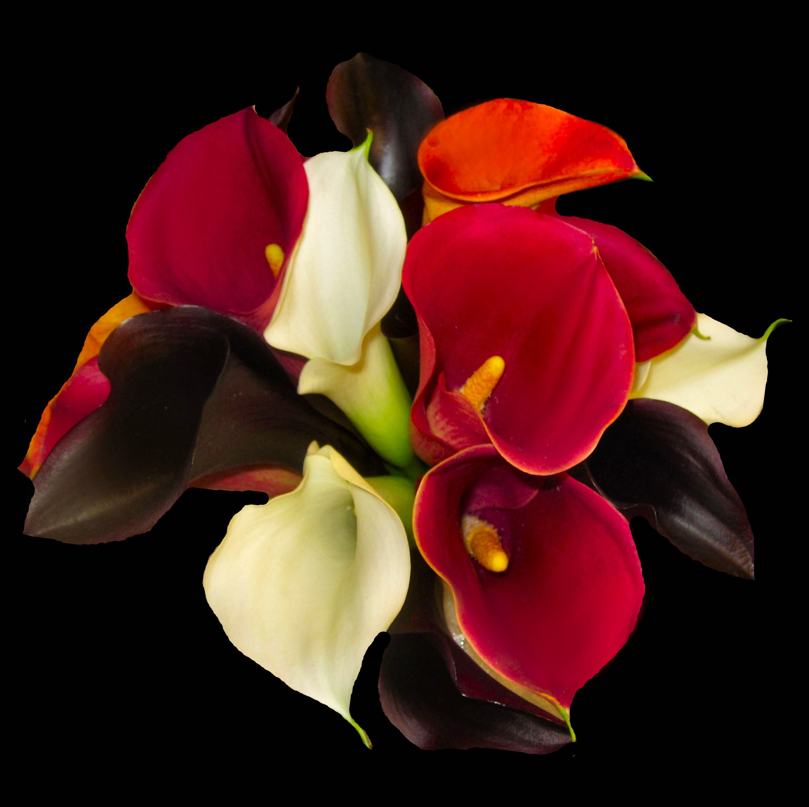 Wedding Bouquet Or Use The Same Flowers For A Christmas