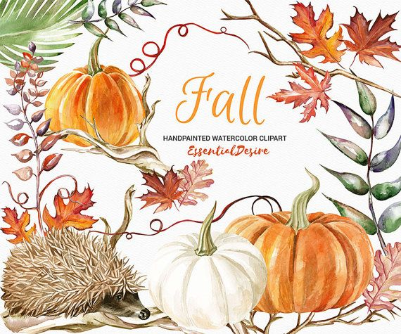 Thanksgiving Clipart Watercolor Pumpkin Watercolor Hedgehog
