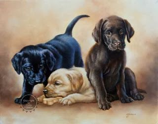 Кошки и собаки - Judy Gibson (1947-2005) | Собачье ...