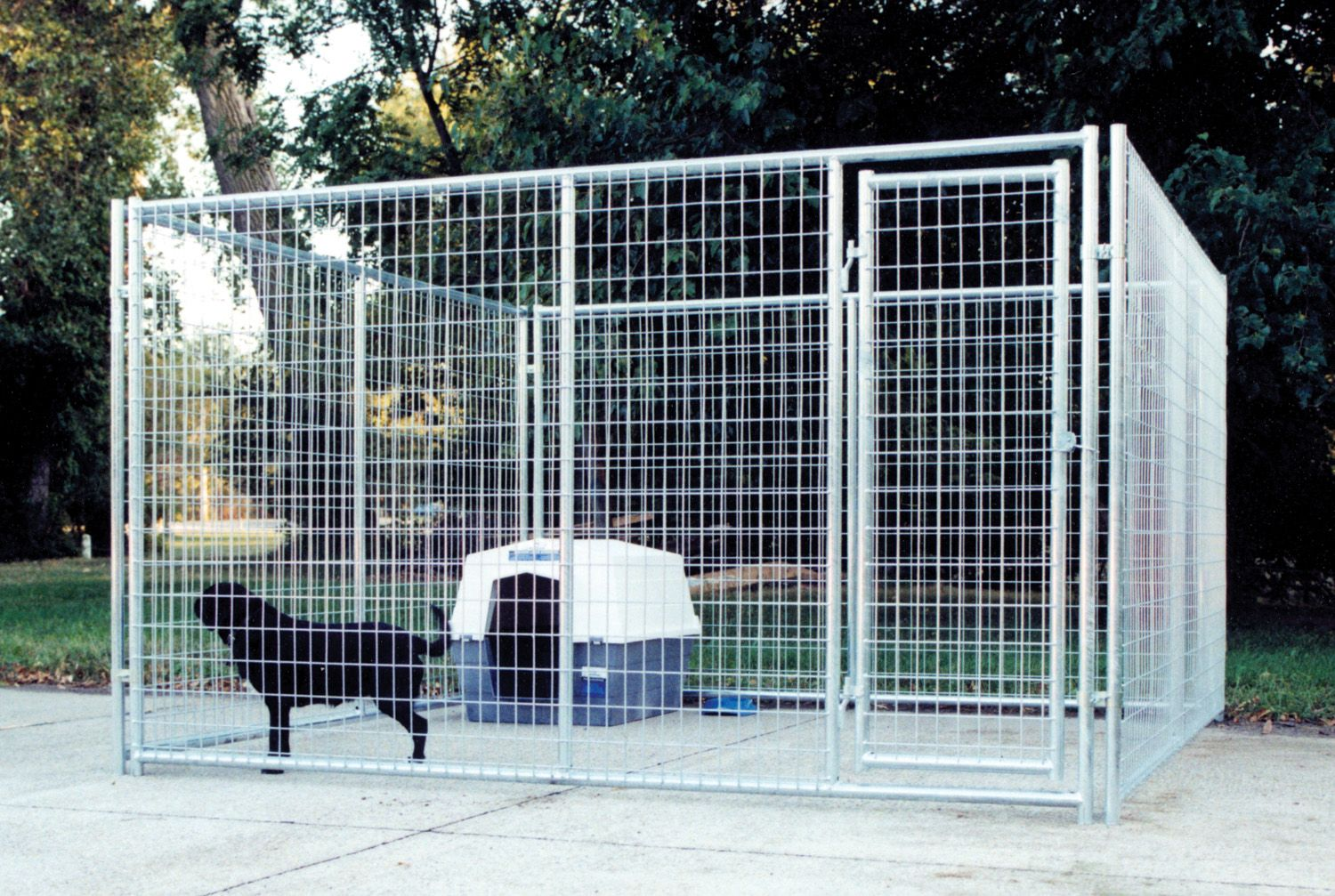 10 X 10 Complete Kennel Magnum Kennels Dog Kennel Affenpinscher Dog Kennel
