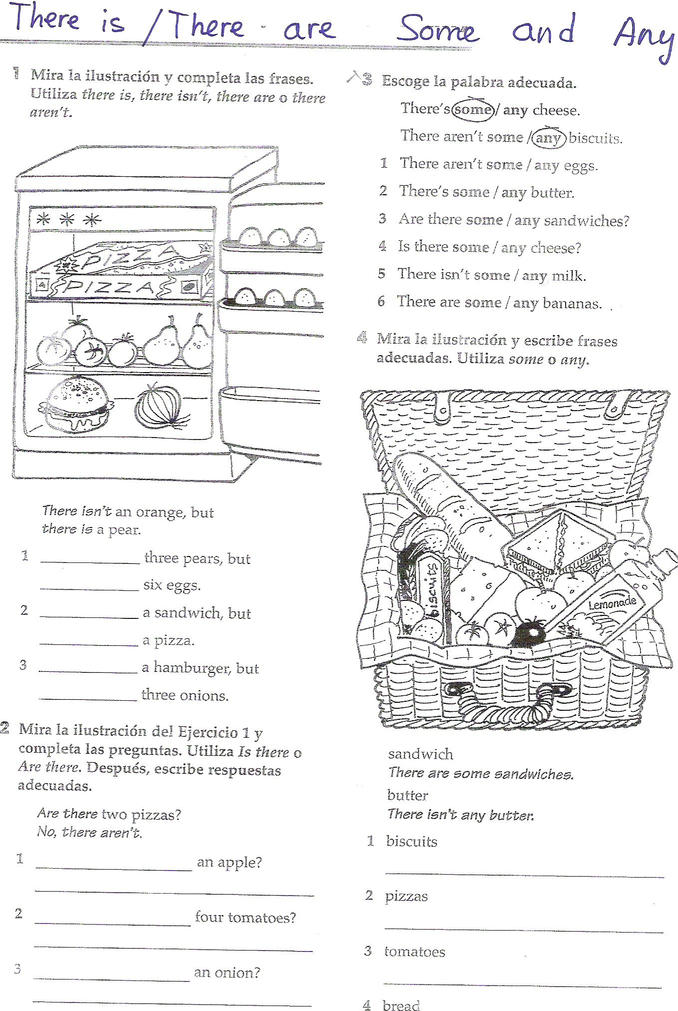 Some Any worksheet   English   Pinterest   Worksheets, English and ...