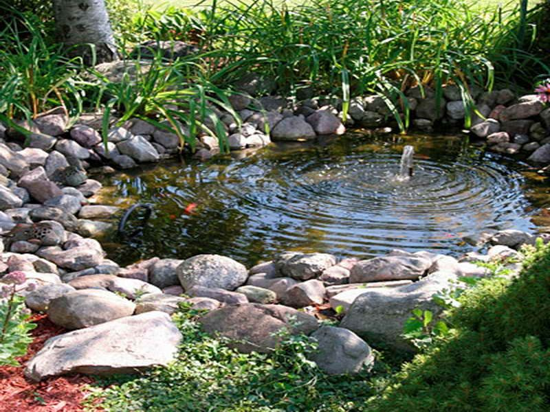 Backyard water feature fountain powered water fountain for Small garden pond with fountain