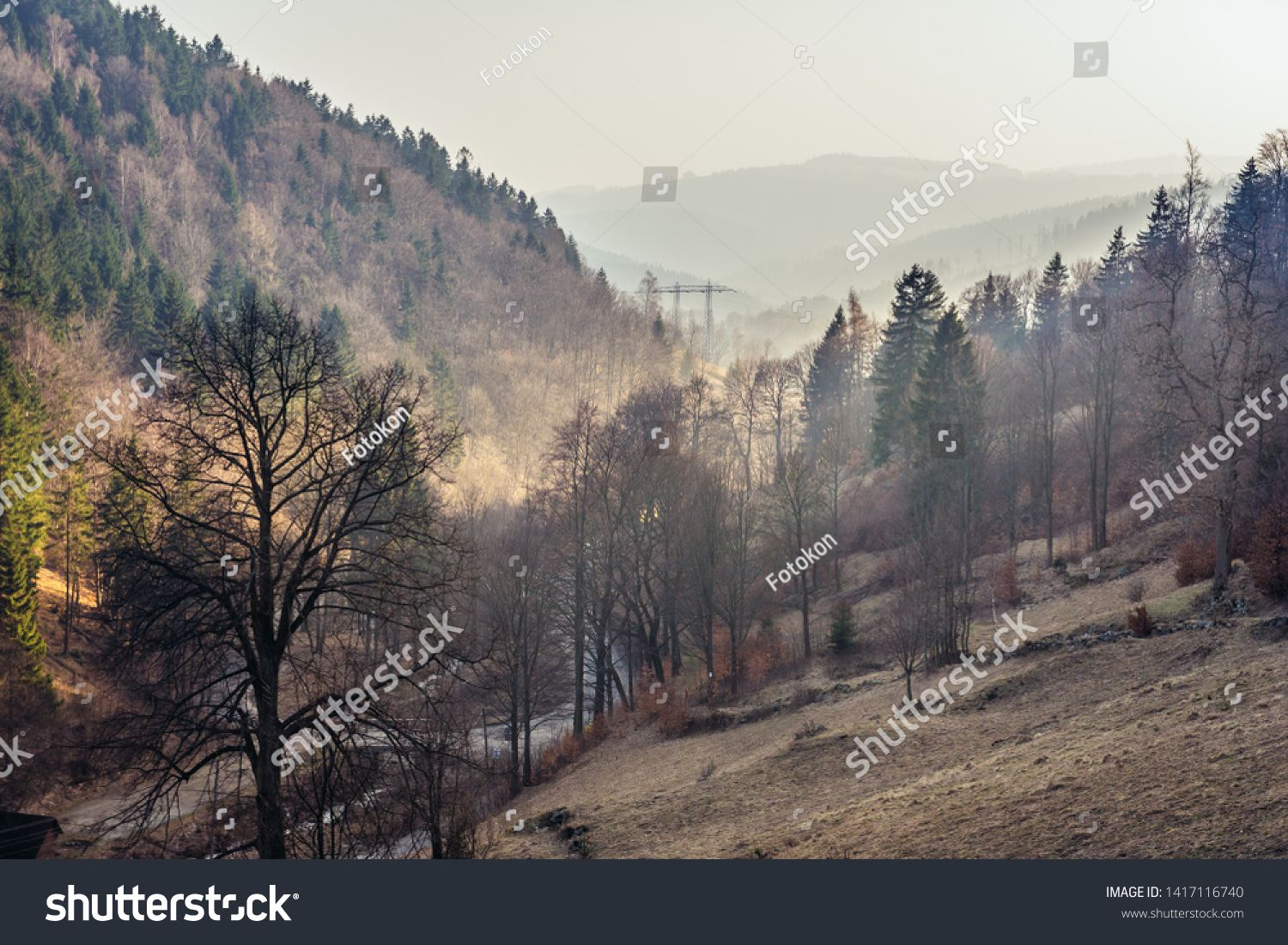 Aerial View From Path To Great Owl Mountain In Owl Mountains Landscape Park Protected Area In Lower Silesia P Aerial View Mountain Landscape Natural Landmarks