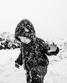 It's Always Sonny Blog :: April In Colorado // A Snow Storm #colorado #snow #snowphotography