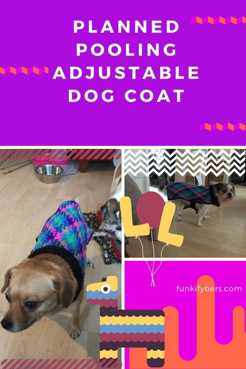 Adjustable planned pooling dog coat free crochet pattern adjustable planned pooling dog coat free crochet pattern bankloansurffo Gallery