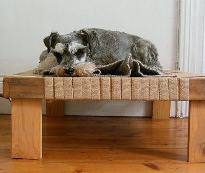 Dog Bed Diy Dog Bed Diy Pet Bed Stylish Dog Beds