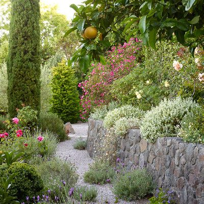 6 Lessons For Mediterranean Climate Gardening   Sunset Magazine