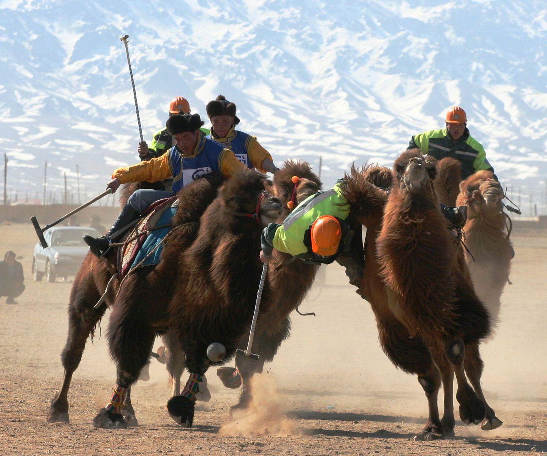 """On horseback, Mongolian """"Polo"""" Mongolia, Trans siberian"""
