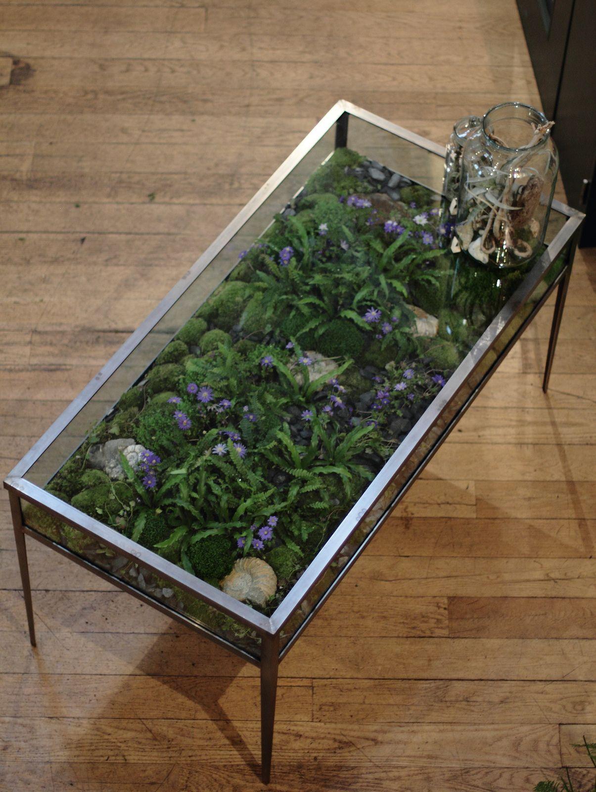 Rectangular Glass Terrarium Coffee Table Home Terrarium Table