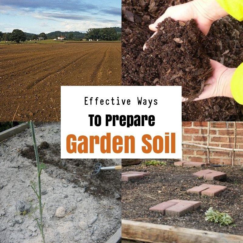 How To Prepare Soil For Gardening Garden Soil Preparation Garden Soil Healthy Garden