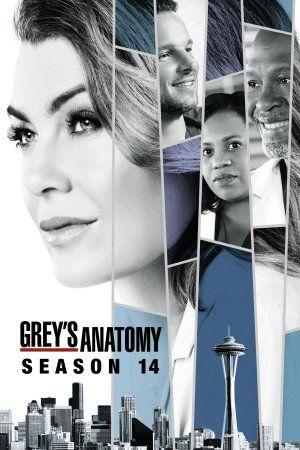 La Decima Cuarta Temporada De La Serie Grey S Anatomy Nos Mostrará Esta Vez En Su Trama La Vida De Ver Anatomia De Grey Anatomía De Grey Serie Anatomia De Grey