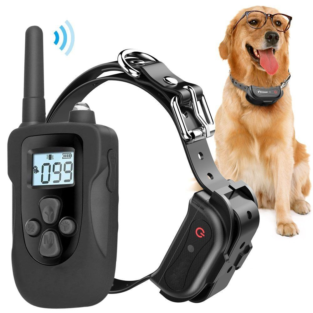 Pin By Dare To Be On Doggie Fun Training Collar Dog Training