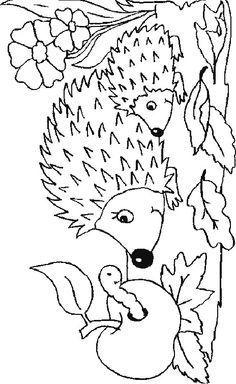 Malvorlage Igel Igel Diy Hallowen Igel Ausmalbild Malvorlagen Tiere Ausmalen