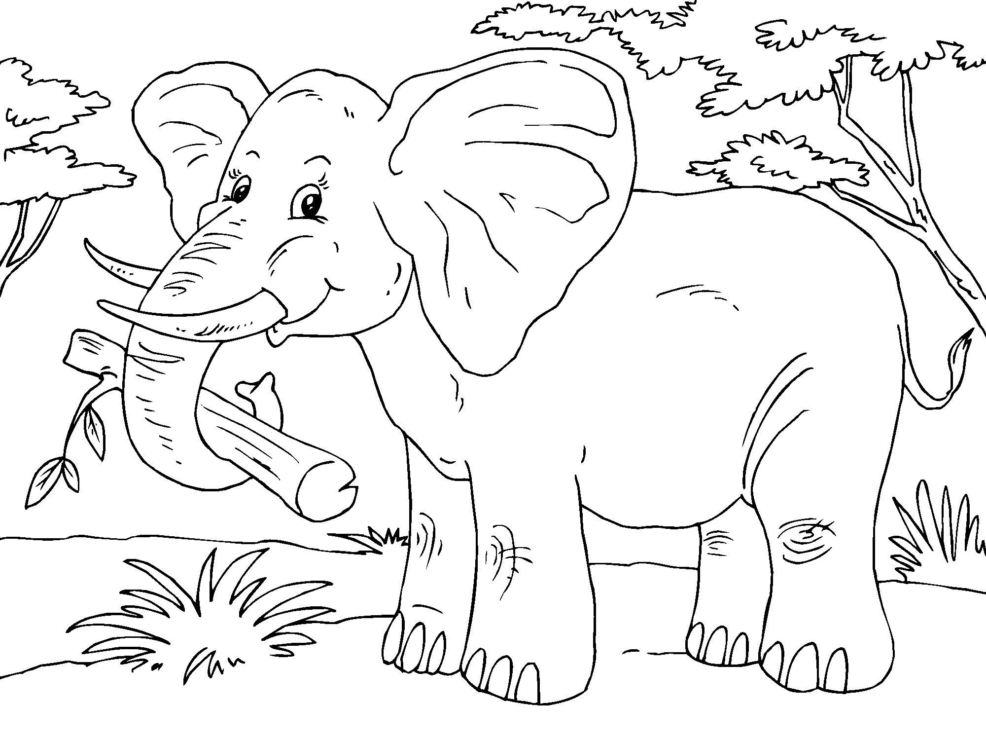 Kleurplaat Elephant Coloring Page Elephant Drawing Animal Coloring Pages