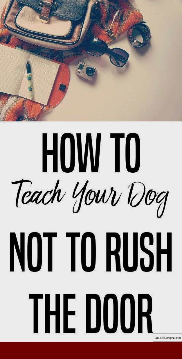 How To Train Your Dog To Poop In One Spot And Pics Of Training A