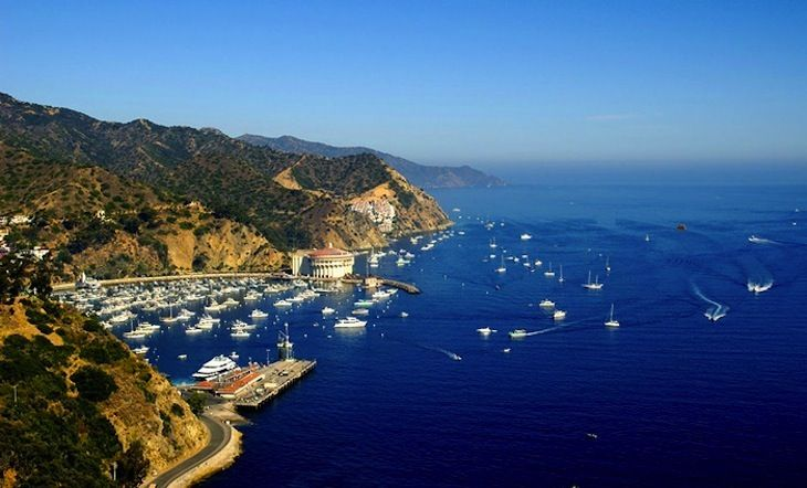 Catalina Island California Ferry Deals For Day Trippers