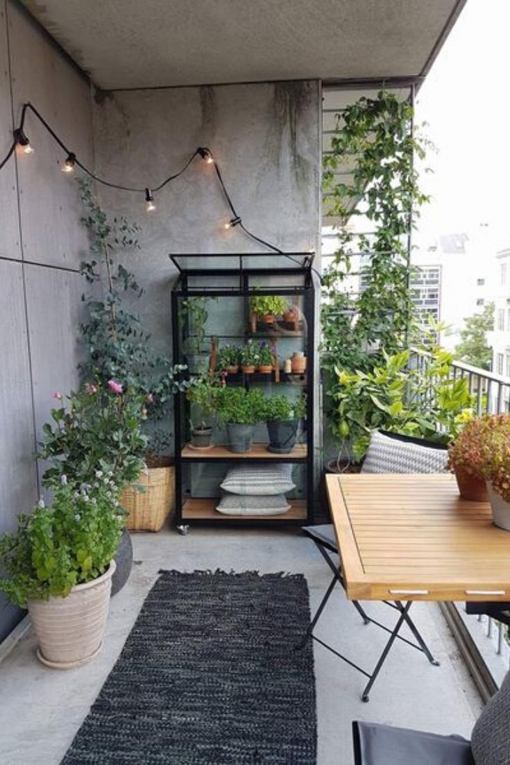 Een Sfeervol Balkon Met Fonq Stadstuinen Tuin Balkon Planten