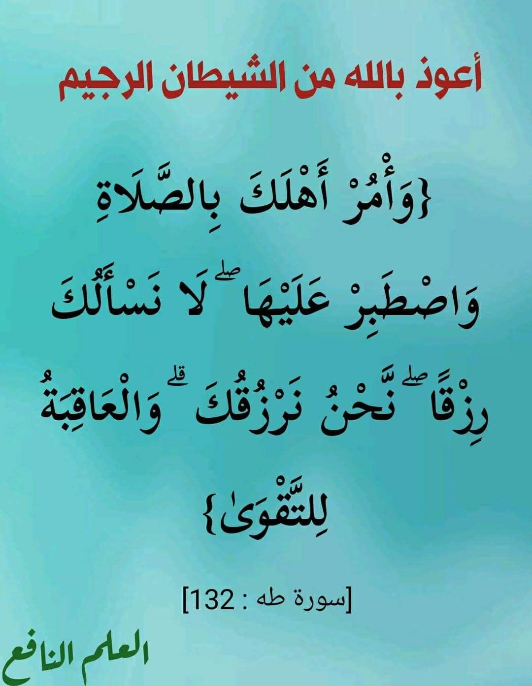 Pin By The Noble Quran On I Love Allah Quran Islam The Prophet Miracles Hadith Heaven Prophets Faith Prayer Dua حكم وعبر احاديث الله اسلام قرآن دعاء Quran Wisdom Invocation