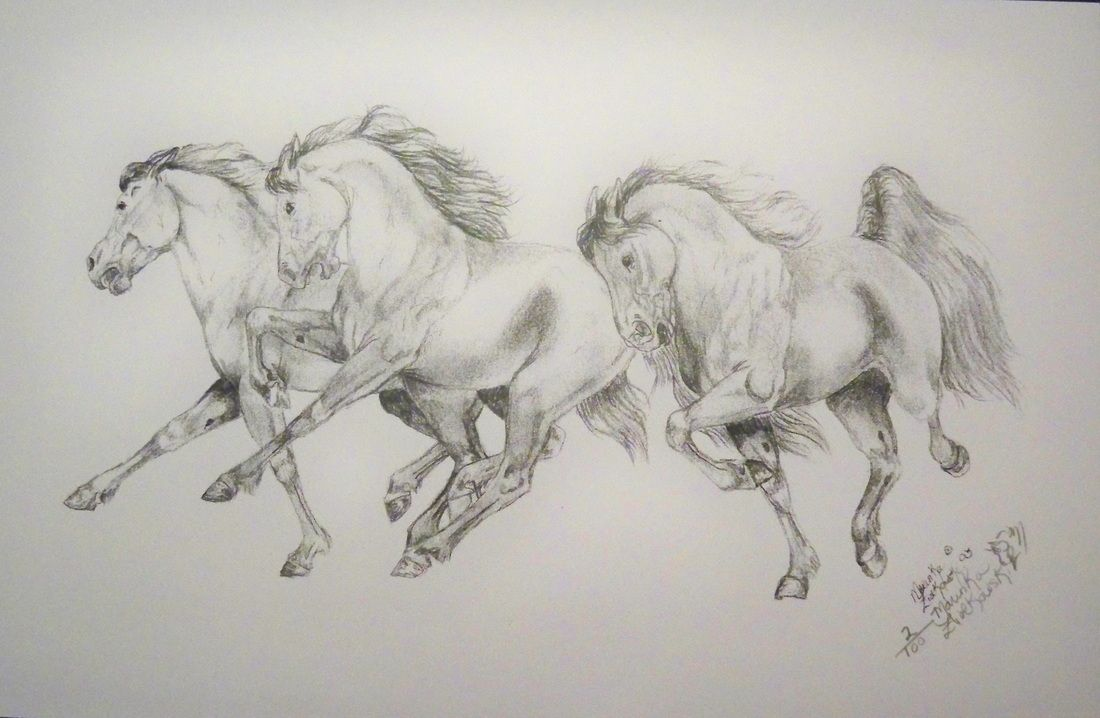 Pin By Laura Rohrdanz Sacca On Dibujos Horse Sketch Horse Running Drawing Horse Drawings [ 718 x 1100 Pixel ]