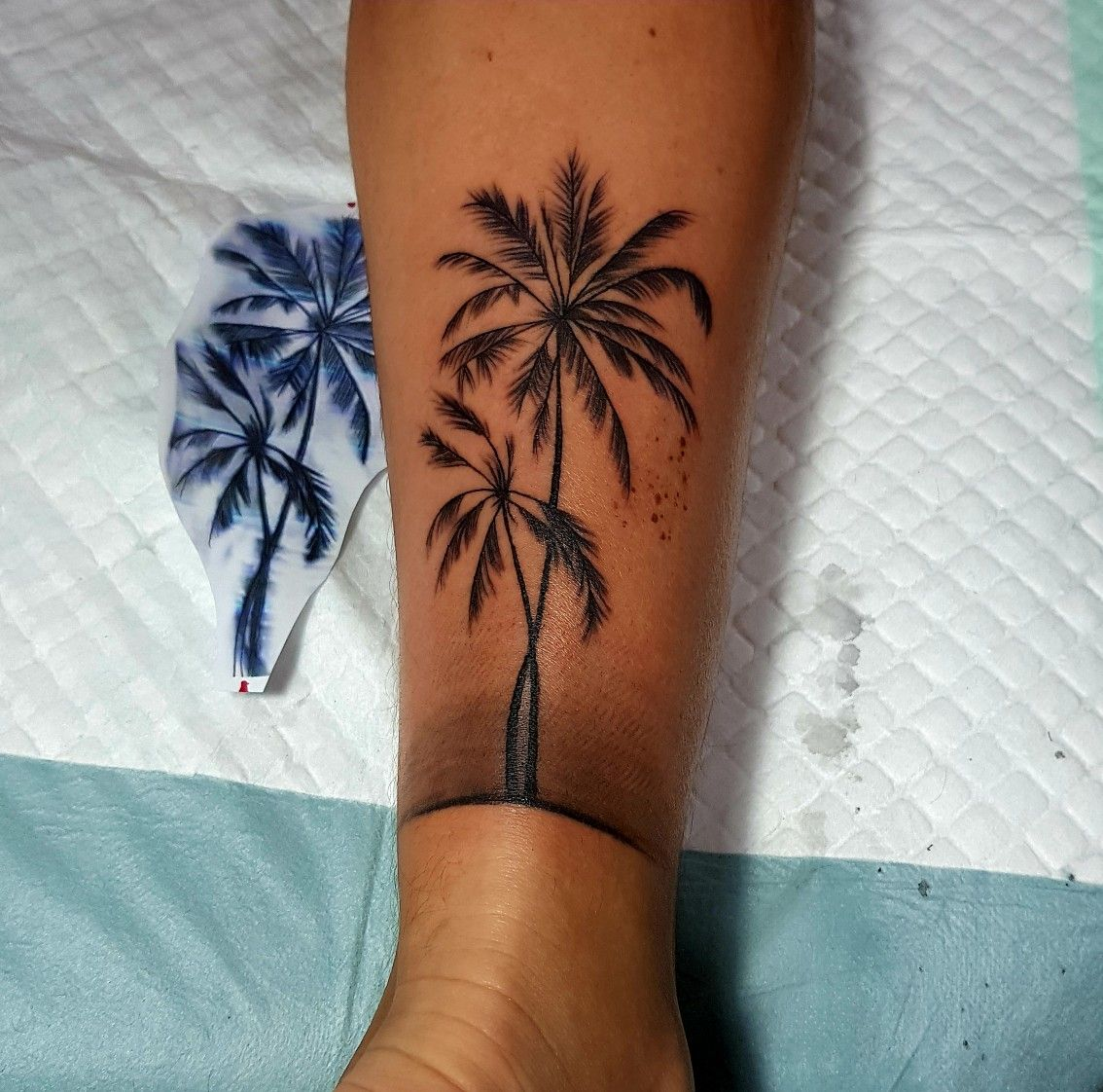 Tatouage palmier/ palm tree (With images) Palm tattoos