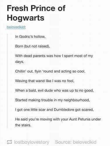 Harry Potter Rap Harry Potter Song Harry Potter Universal Harry Potter Obsession