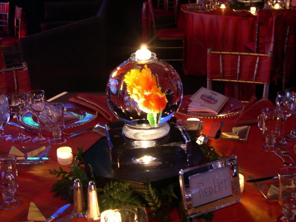 20+ Fire And Ice Wedding Theme regarding Wedding Party | Wedding ...