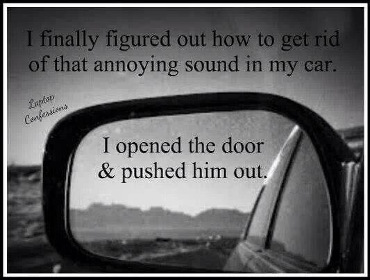 I finally figured out how to get rid of that annoying sound in my car. I opened the door & pushed him out.