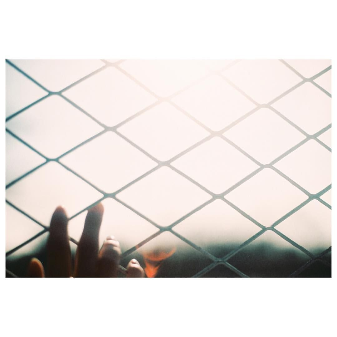"#nikonf3 . "" I wanna be with you "" . . . . #フィルム#フィルム写真#フィルムに恋してる#写真好きな人と繋がりたい#ファインダー越しの私の世界#愛媛#松山#愛媛のくらし#光 #film#filmcamera#filmphotography#lovefilm#nikon#fujifilm#igersjp#hueart_life#ig_japan#indies_gram#RECO_ig#team_jp_西#matsuyama#sunshine#lifeisbeautiful"