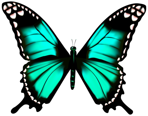 Bluebutterflyhouse Hd Blue Butterfly Png Transparent Png Is Free Transparent Png Image To Explore Blue Butterfly Wallpaper Blue Butterfly Butterfly Images