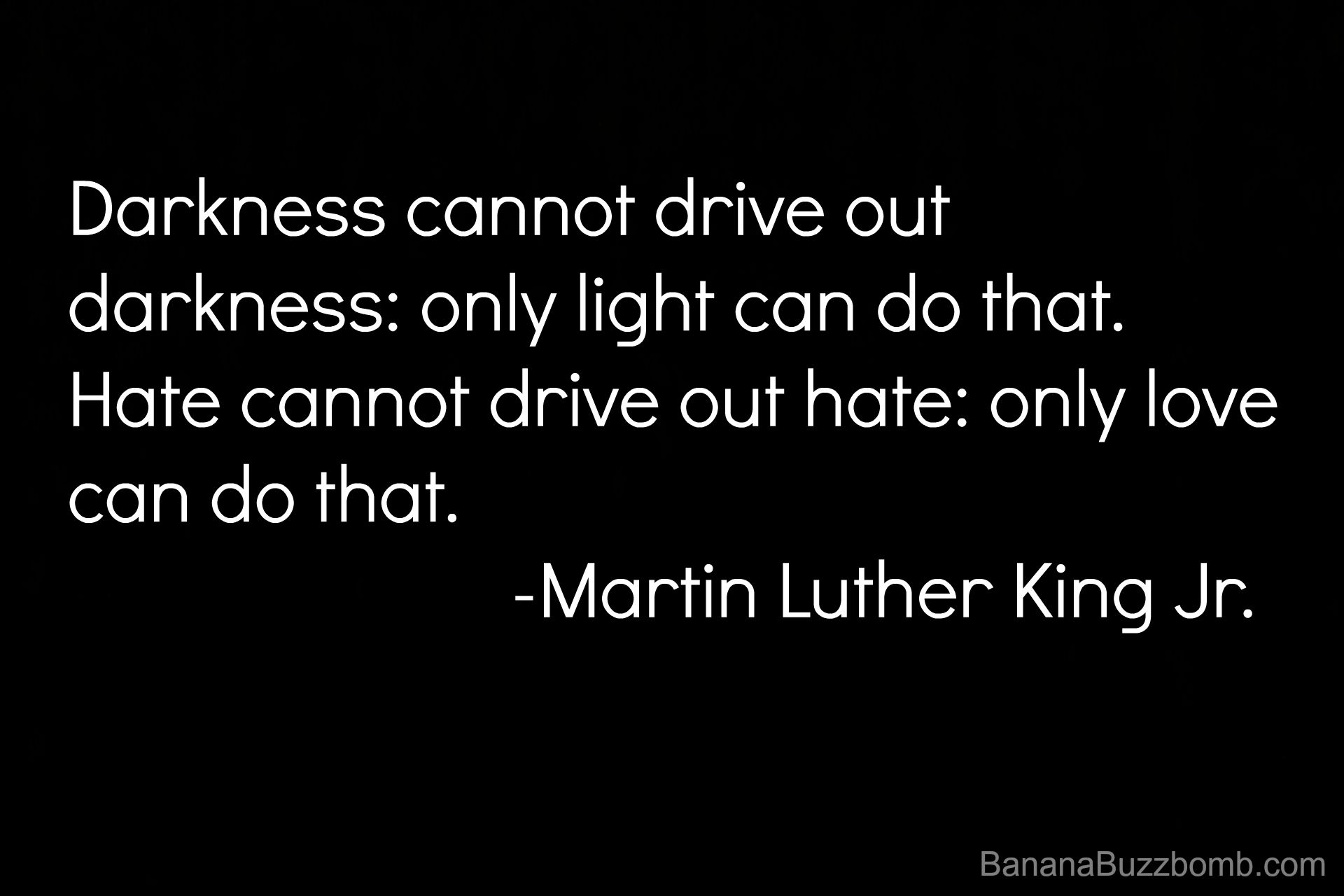 Hate cannot drive out hate only love can do that Martin Luther King Quote
