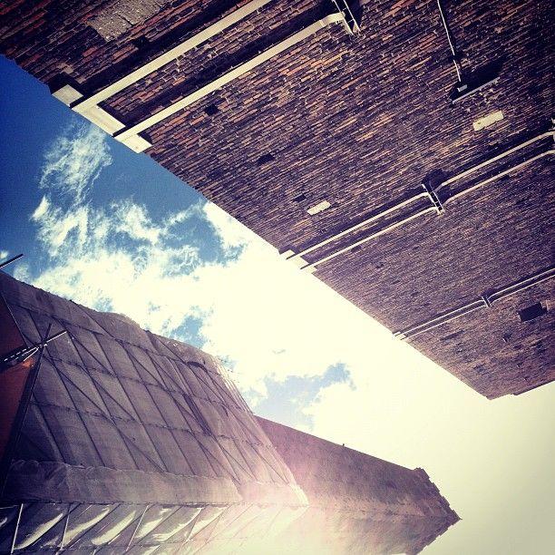 Sole su Bologna :D L'ideale per una passeggiata in centro - Instagram by 7unknown0entity2