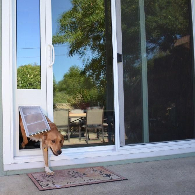 The Endura Flap Quick Panel 3 Is A Light Version Of The Thermo Panel 3e And Installs Without The Use Of To Sliding Glass Door Sliding Glass Dog Door Dog Door