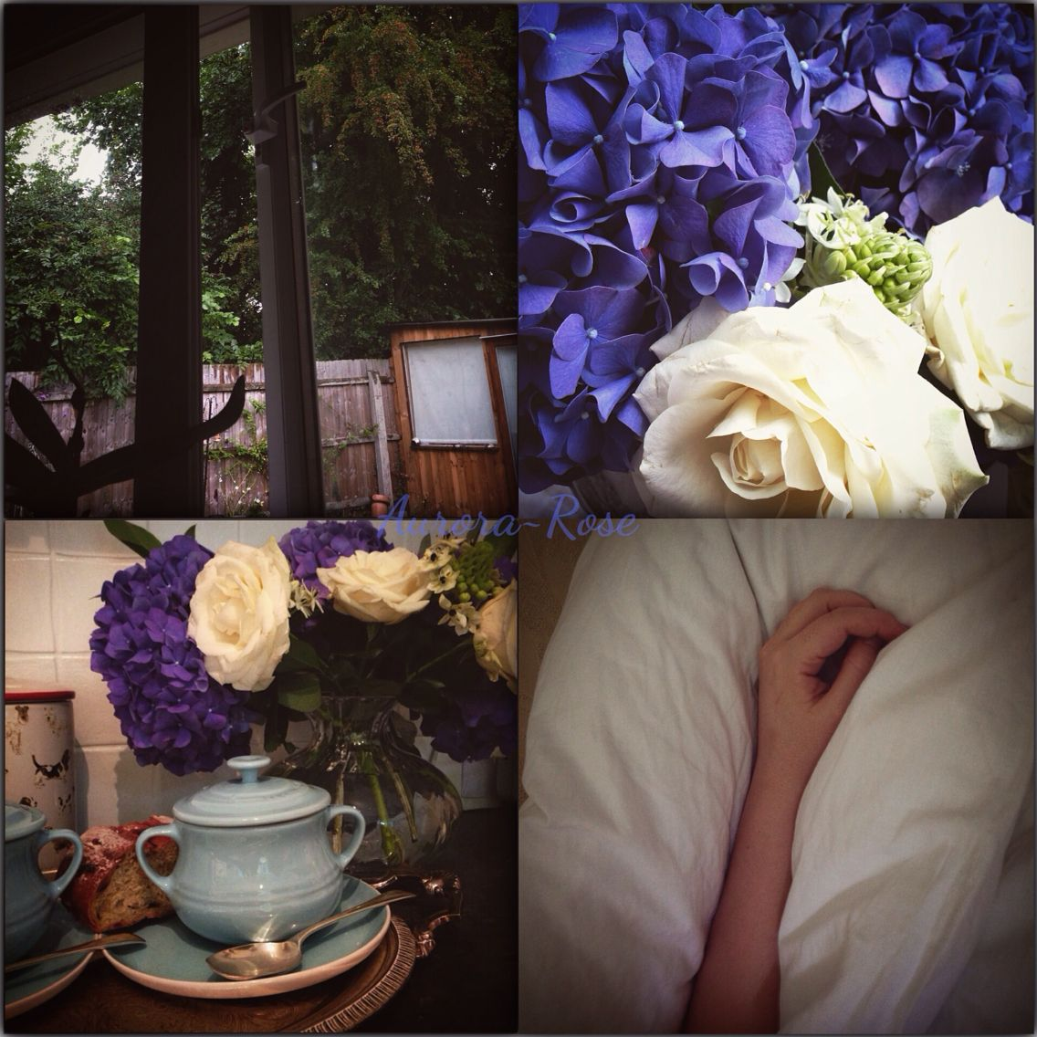 Days like these... #Hydrangeas #Soup #Warm #Flowers #Rain #Bed #Roses #Blue #Rustic #Autumn #Home