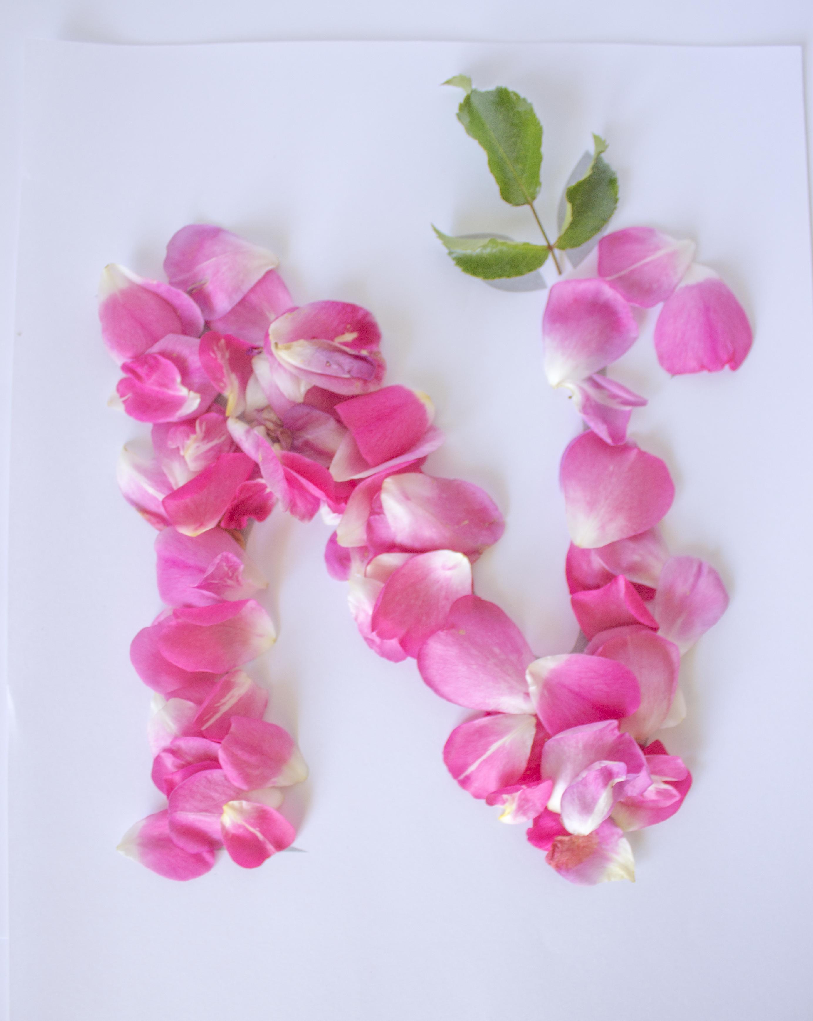 Pretty Floral Letter N Floral Letters Alphabet Letters Design Alphabet Wallpaper