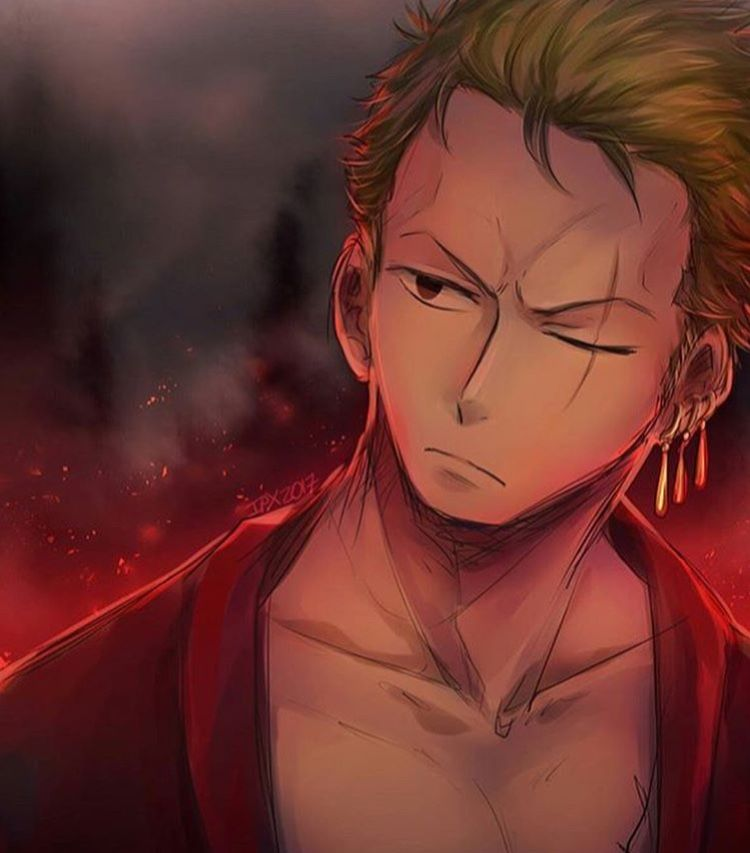 pin by the muse on one piece one piece anime roronoa zoro one piece world