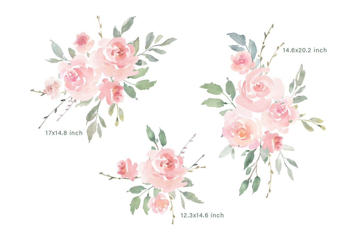 Pink Blush Watercolor Flowers Roses Png Collection 176474 Illustrations Design Bundles Pink Rose Tattoos Flower Sketches Watercolor Flowers