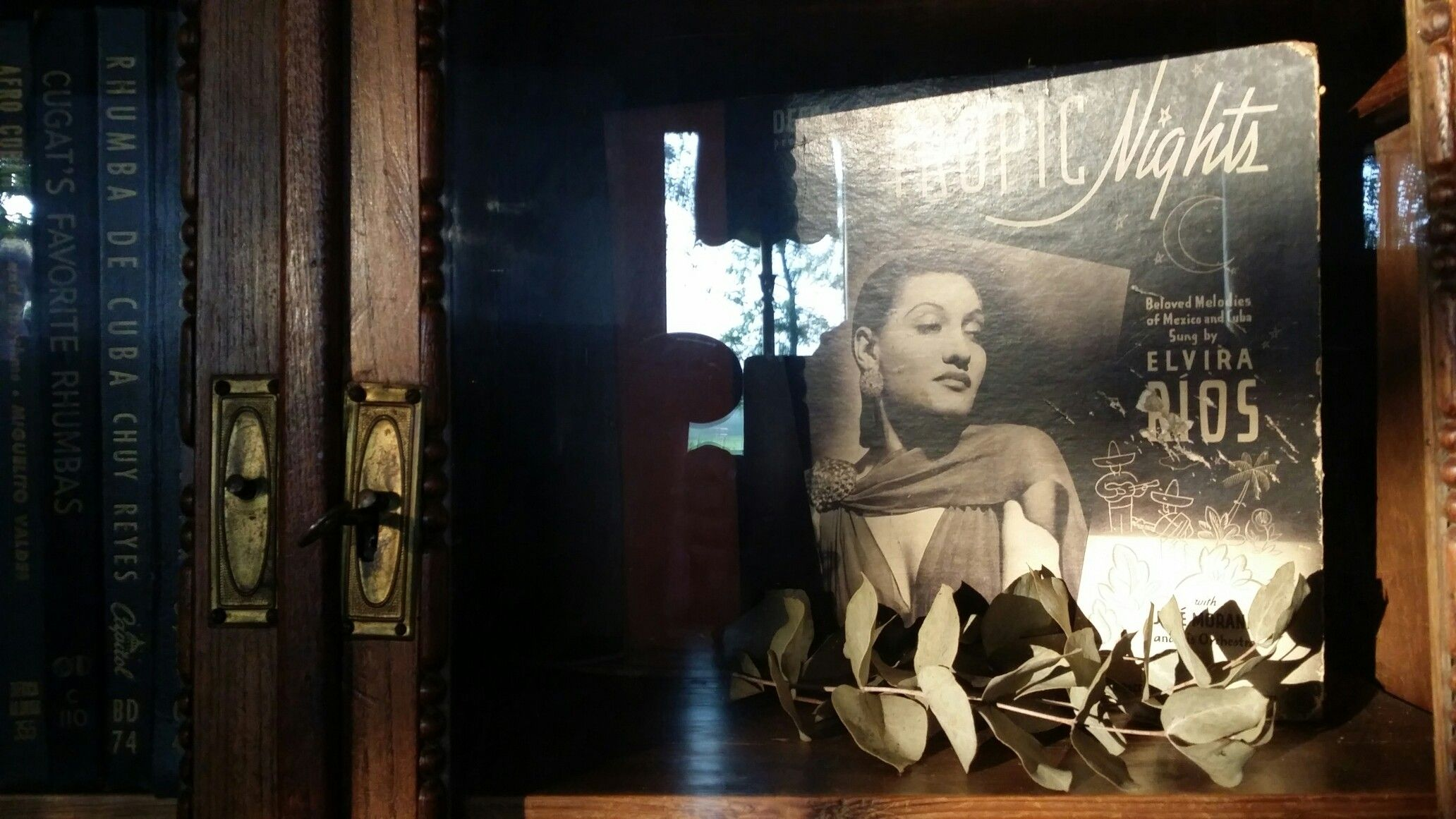 Elvira Rios - Tropic Nights #shellac