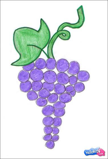 How To Draw Fruits Grape Easy Step By Step Tutorial For Kids Fruits Drawing Grape Drawing Easy Drawings For Kids