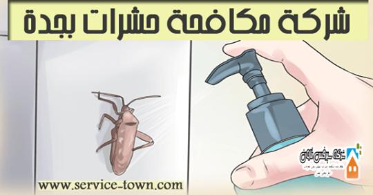 شركة مكافحة حشرات بجدة Pest Control Jeddah Marketing