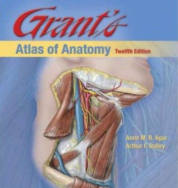 Download Grants Atlas Of Anatomy Pdf All Medical Books