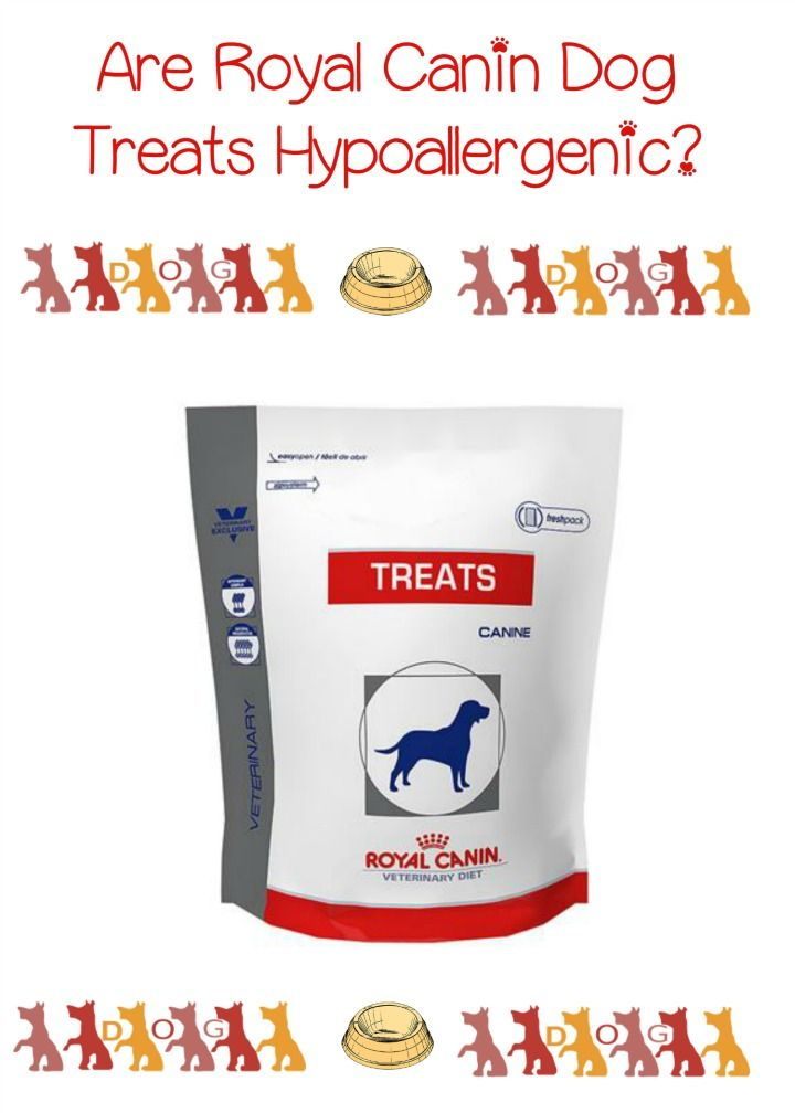 Hypoallergenic Dog Treats From Royal Canin Hypoallergenic Dog Treats Dog Treats Best Dog Food