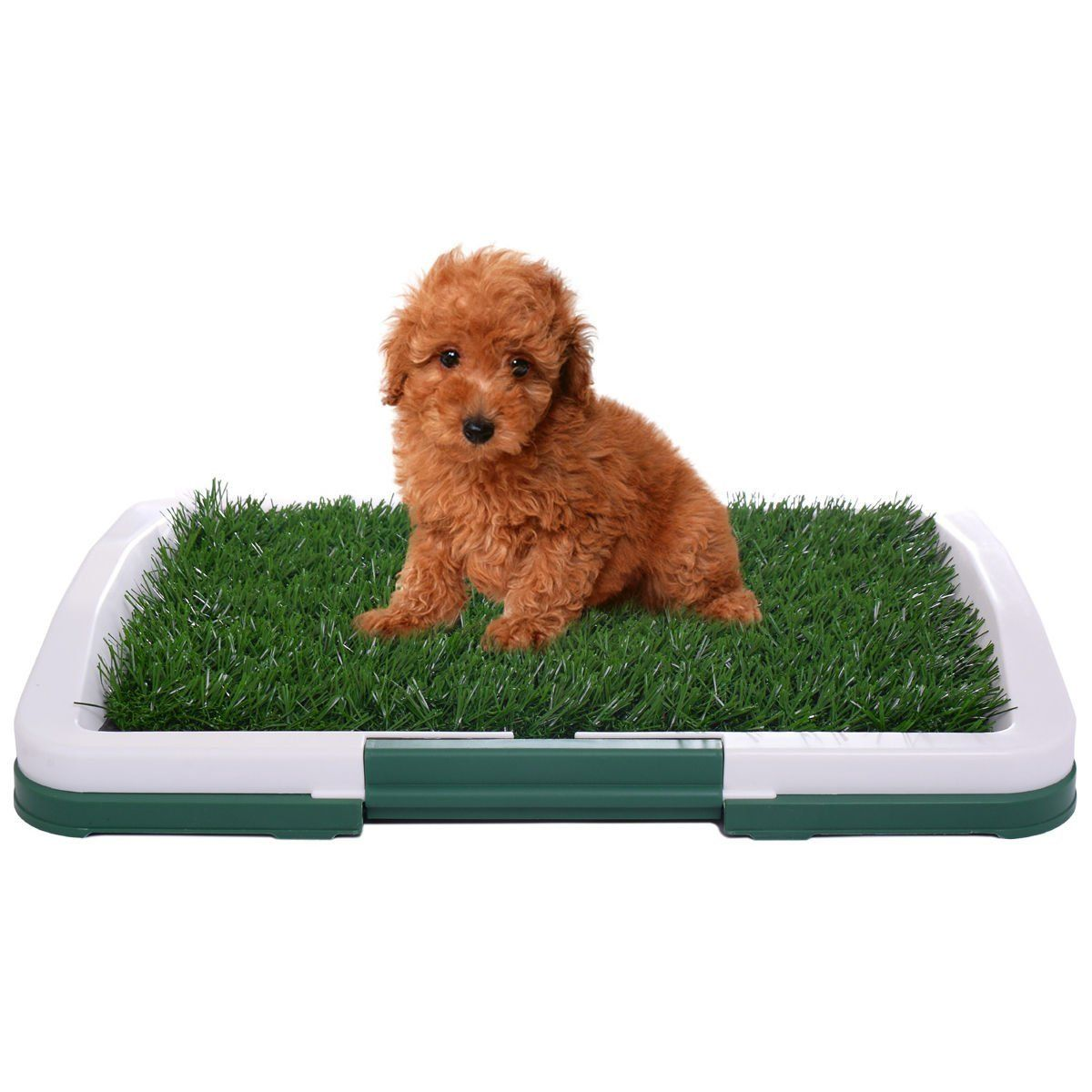 Jaxpety 3 Layers Puppy Potty Dog Pet Trainer Indoor Grass Training