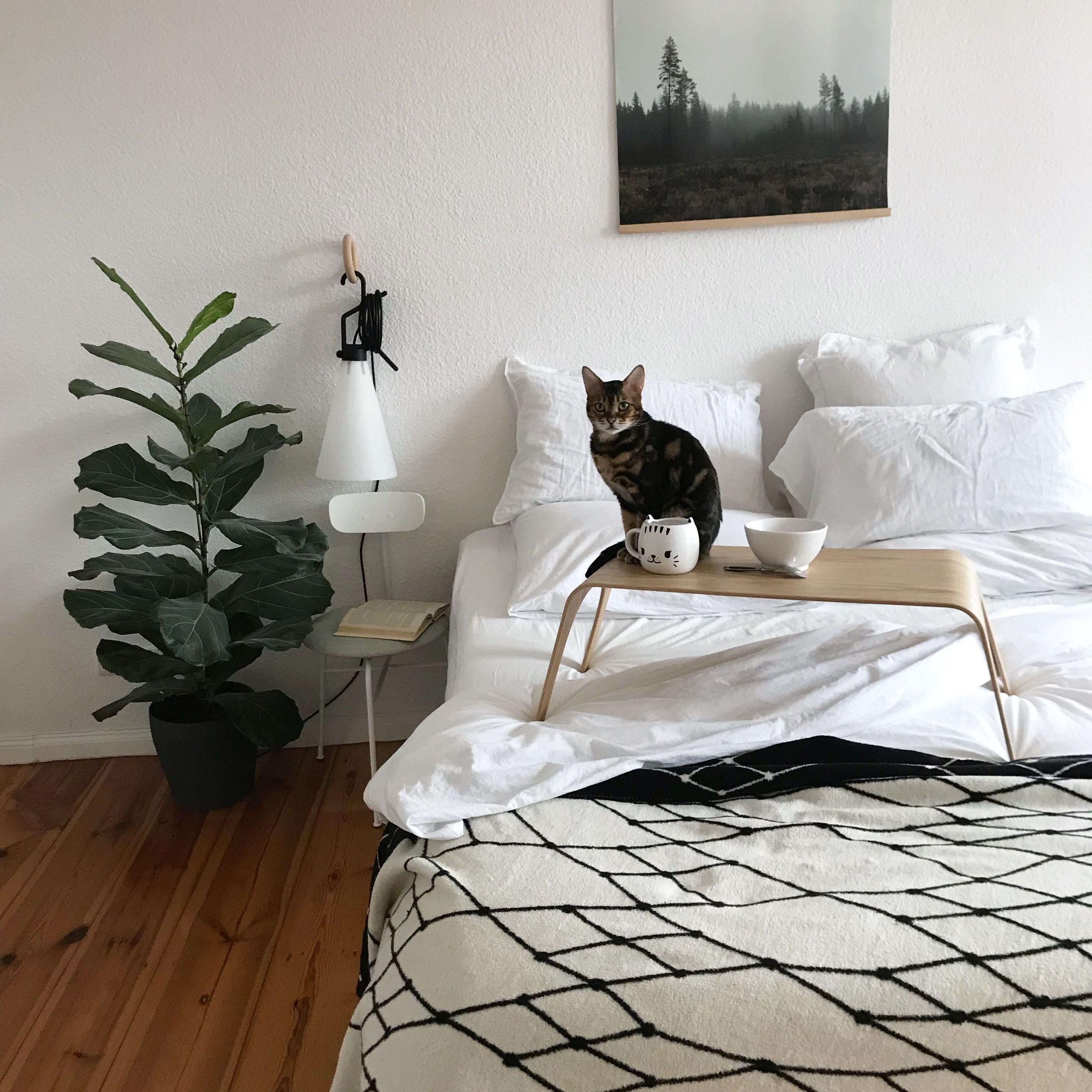 Tableone Fruhstuck Im Bett Tisch Betttisch