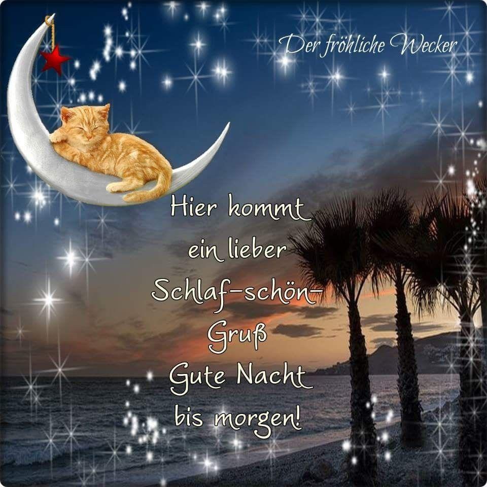 Pin Von Michaela Strasser Auf Gute Nacht Gute Nacht Nacht Und