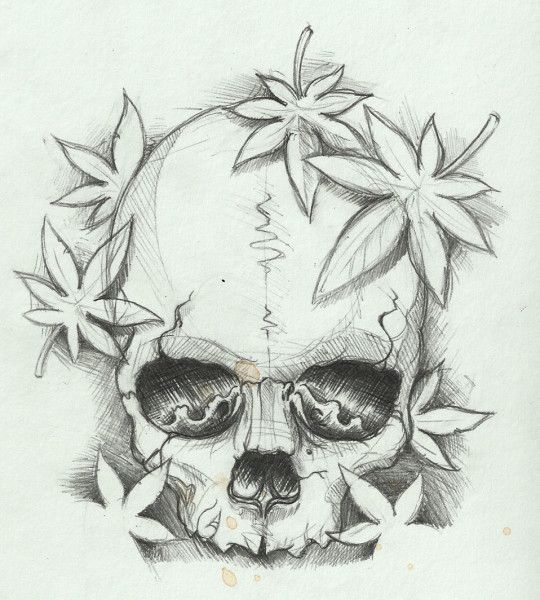 simple skull sketch drawing with marple leaves tattoosk